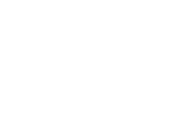 Spitfire Analytics - Specialists in IBM Planning Analytics - Lightbulb Idea logo white no background