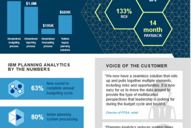 The Total Economic Impact of IBM Planning Analytics
